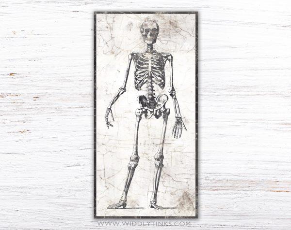 vintage halloween anatomical skeleton sign simple