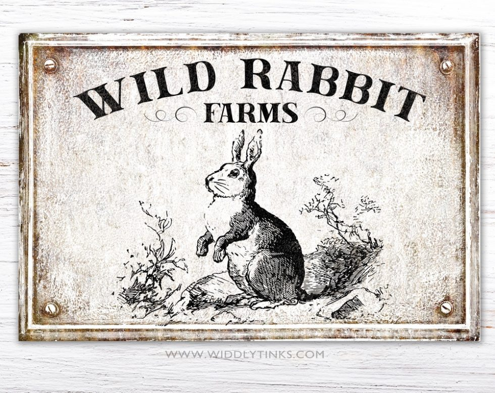wild rabbit farms spring sign simple